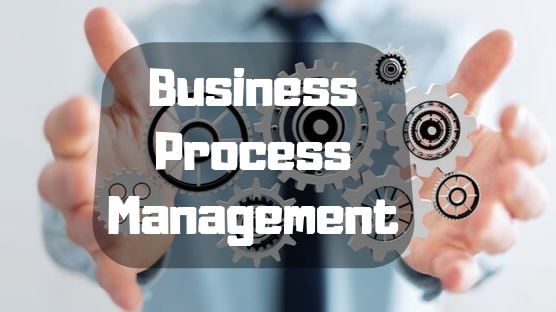 What is Business Process Management Life Cycle