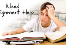 Best College Assignment Help