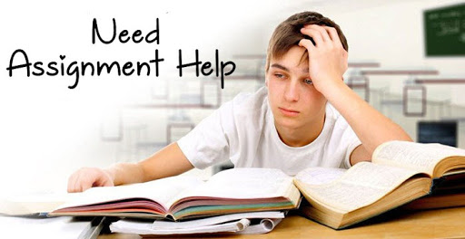 Best College Assignment Help