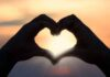 Why Is the Heart Important